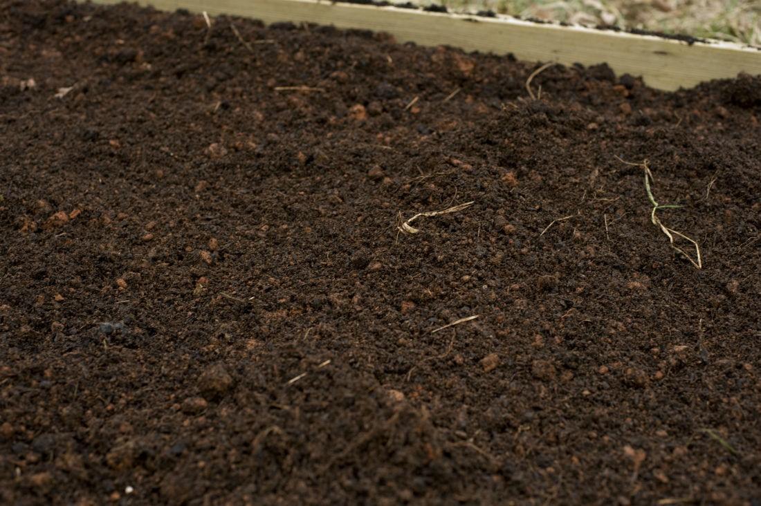 Оптимальный уровень кислотности pH почвы для овощей