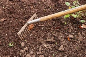 вред кислой почвы