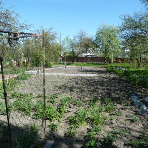 Пять способов просто и эффективно освоить земельный участок