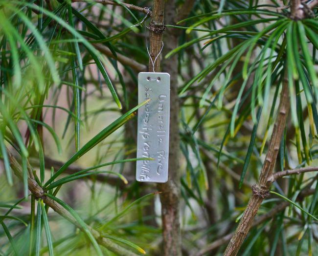 способ маркировки растений