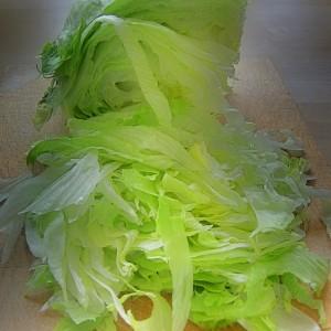 выращивание кочанного салата Айсберг