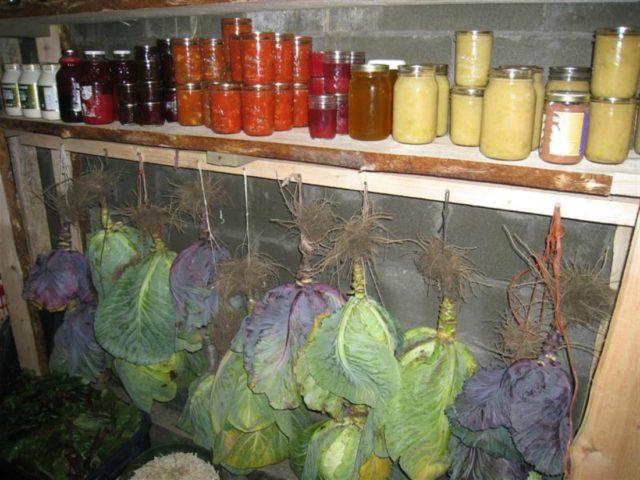 погреб с овощами