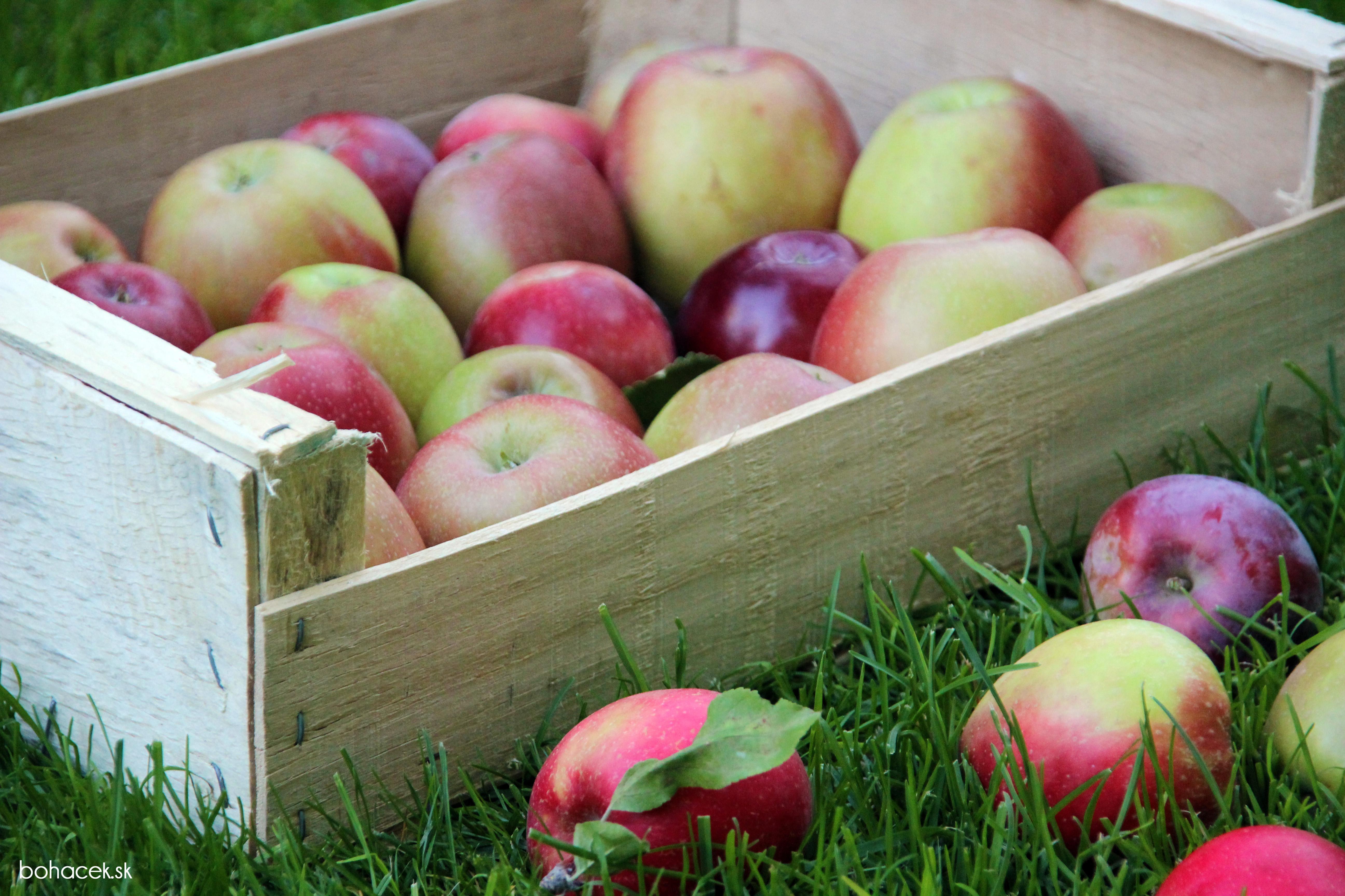 Как хранить яблоки зимой в домашних условиях 44