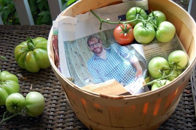 хранение недозрелых томатов