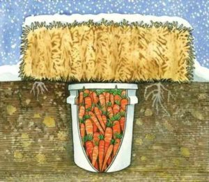 хранение овощей в земле