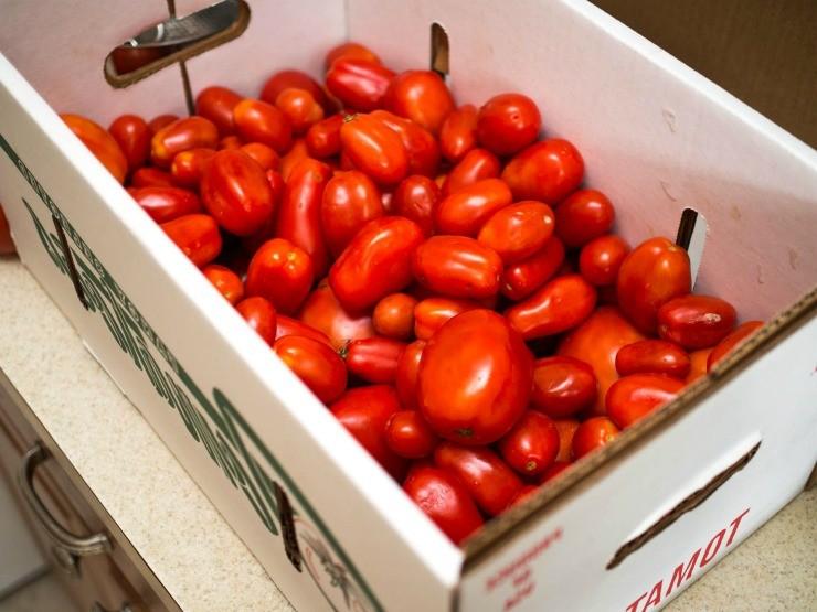плоды томатов в ящиках