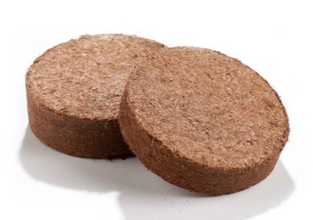 кокосовые таблетки для рассады