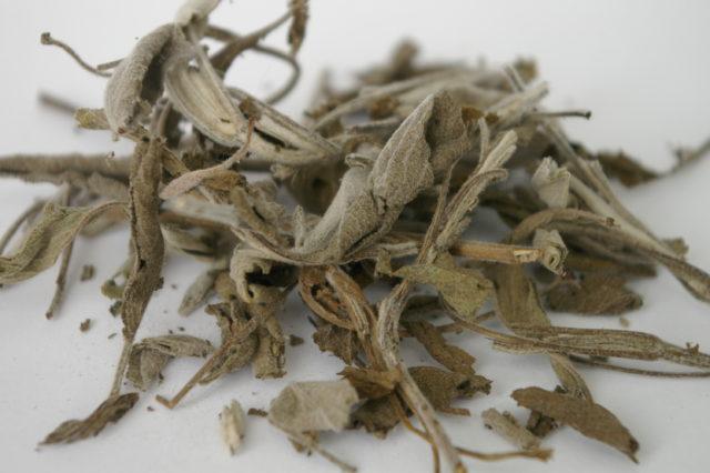 сушёные листья шалфея