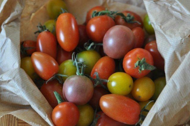 разноцветные черри томаты
