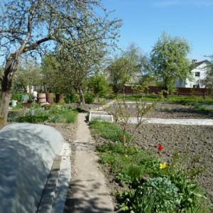 работы в огороде в мае