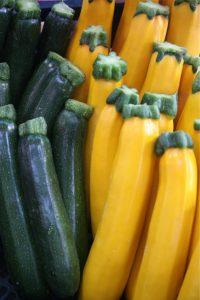 условия выращивания кабачков