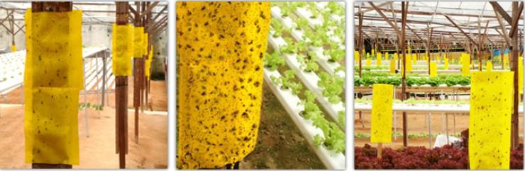 желтые ловушки от вредителей