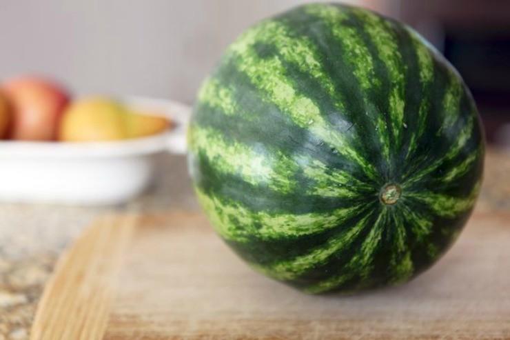 плод арбуза