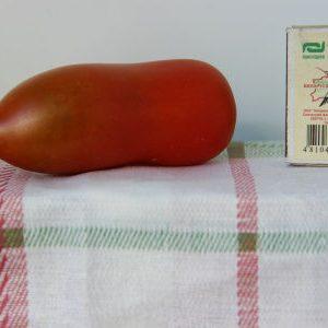 томат сорта Алый Мустанг