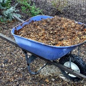 удобрение почвы осенью