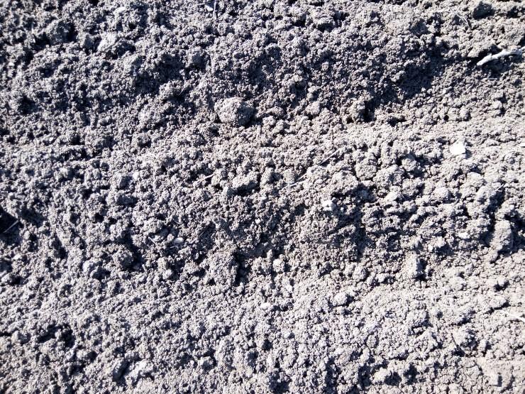 взрыхлённая почва