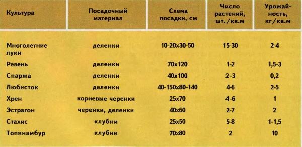 таблица многолетних овощей