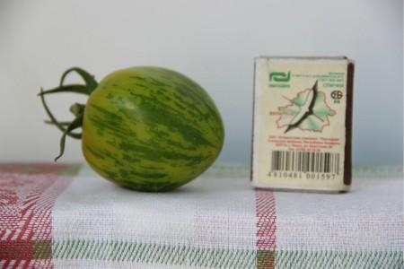 томат сорта Сибирский малахит