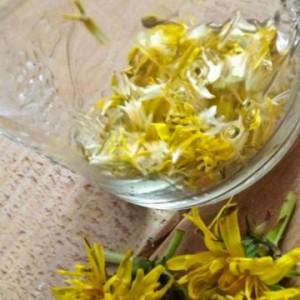 цветы одуванчика в бутылке