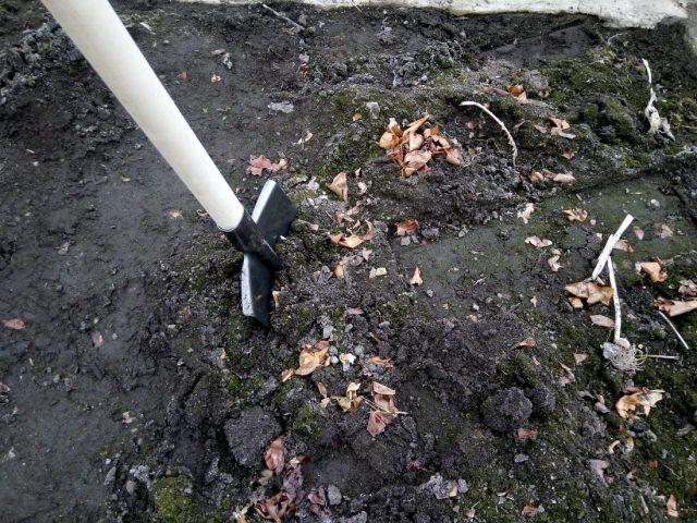 перекопка почвы в теплице перед посадкой томатов