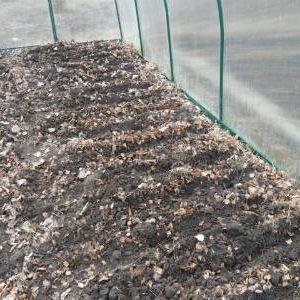 удобрение почвы в теплице листвой
