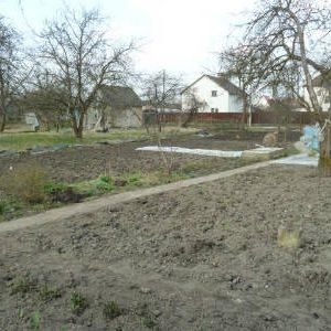 работы в саду в марте
