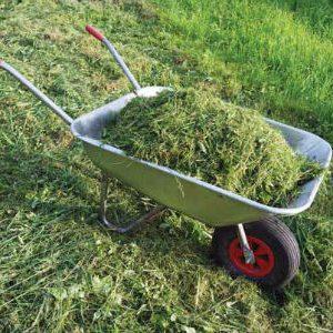 травяной навоз как удобрение