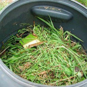 трава в бочке