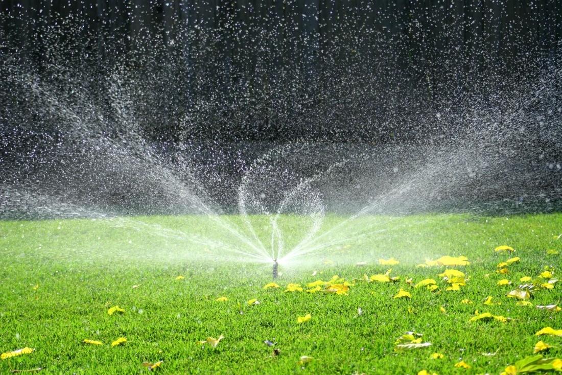 состав воды для полива