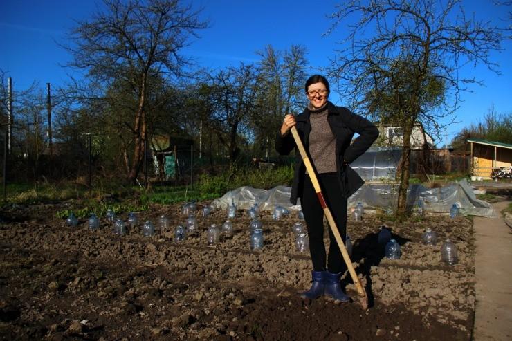 подготовка почвы для посадки перца