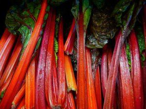 Листовая капуста мангольд рецепты