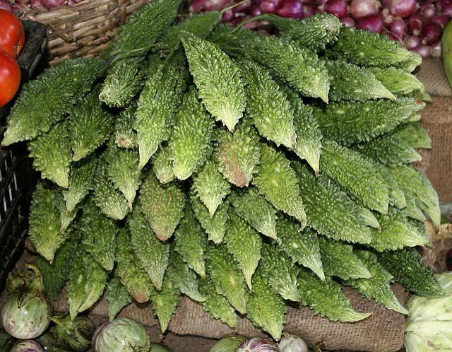 зеленые плоды момордики