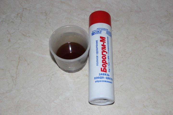борогум-М