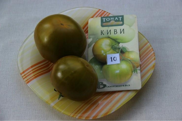 томат сорта Киви