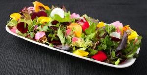 5 лучших съедобных цветов для вашей дачи
