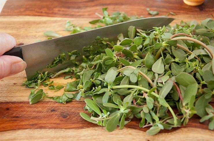 нарезанная зелень овощного портулака