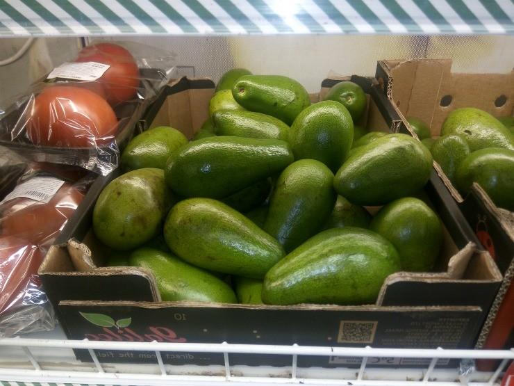 флоридский авокадо