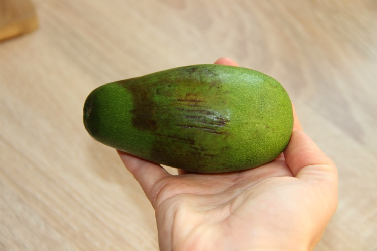 плод авокадо с повреждениями