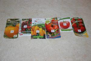 Сорта томатов 2019