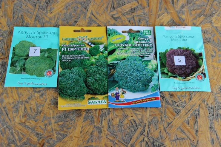 семена брокколи в пакетиках