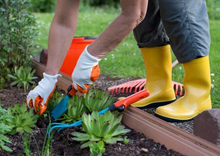 работа в саду в перчатках