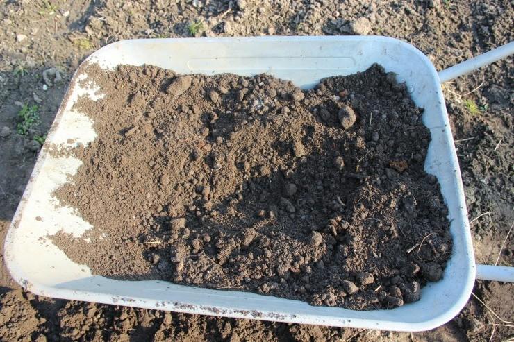 смесь удобрений для посадки смородины
