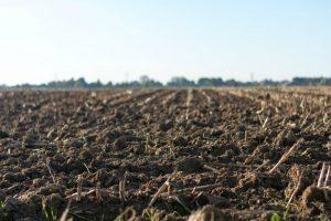 почва осенью