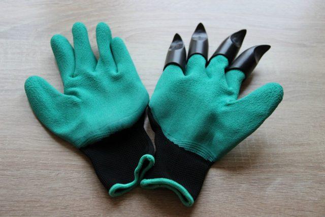 когтистые перчатки