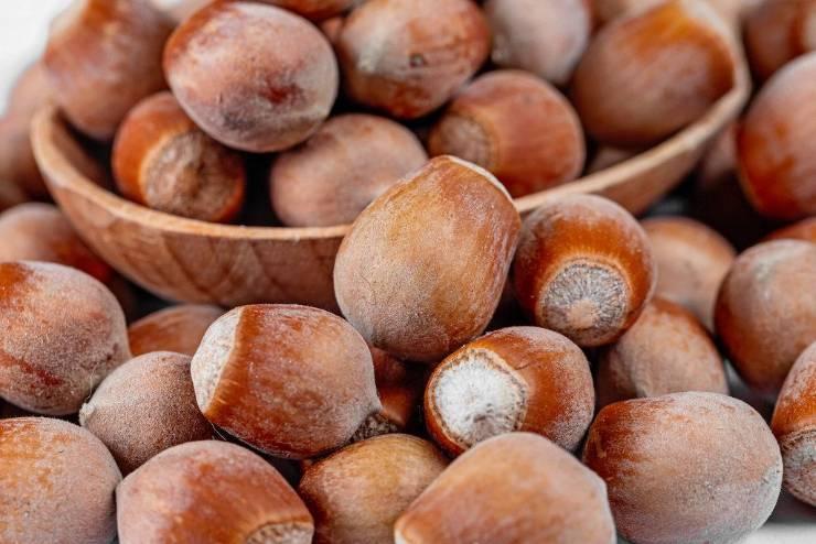 орешки лещины